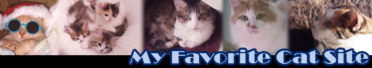 My Favorite Cat Site Banner